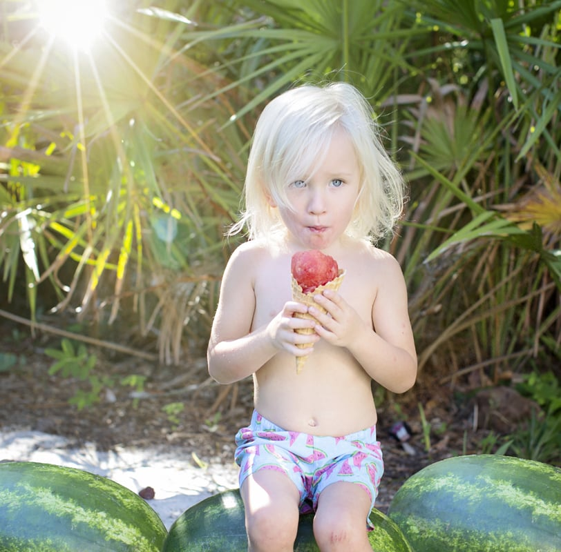 Watermelon Health Benefits Healthy Mom Blogger Healthy Family