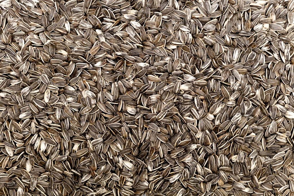 Fertility Superfood!  Have dad eat sunflower seeds for his sperm.